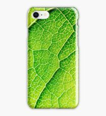 Green Leaf Texture With Visible Stomata Covering The Outer Epidermis Layer iPhone Case/Skin