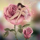 Rose Flower Fairy by Rachel Anderson