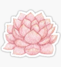 Watercolor pink succulent Sticker