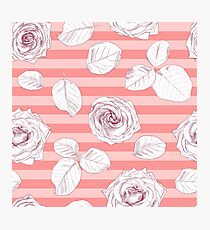 Roses on striped pink background Photographic Print