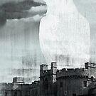 TOWER RAVEN von Daniel Coulmann