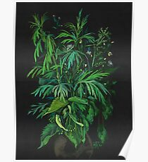 """Green & Black"", summer greenery, floral art, pastel drawing Poster"