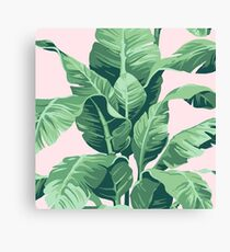 Beverly Hills Palm Leaf Banana Print Pink Canvas Print