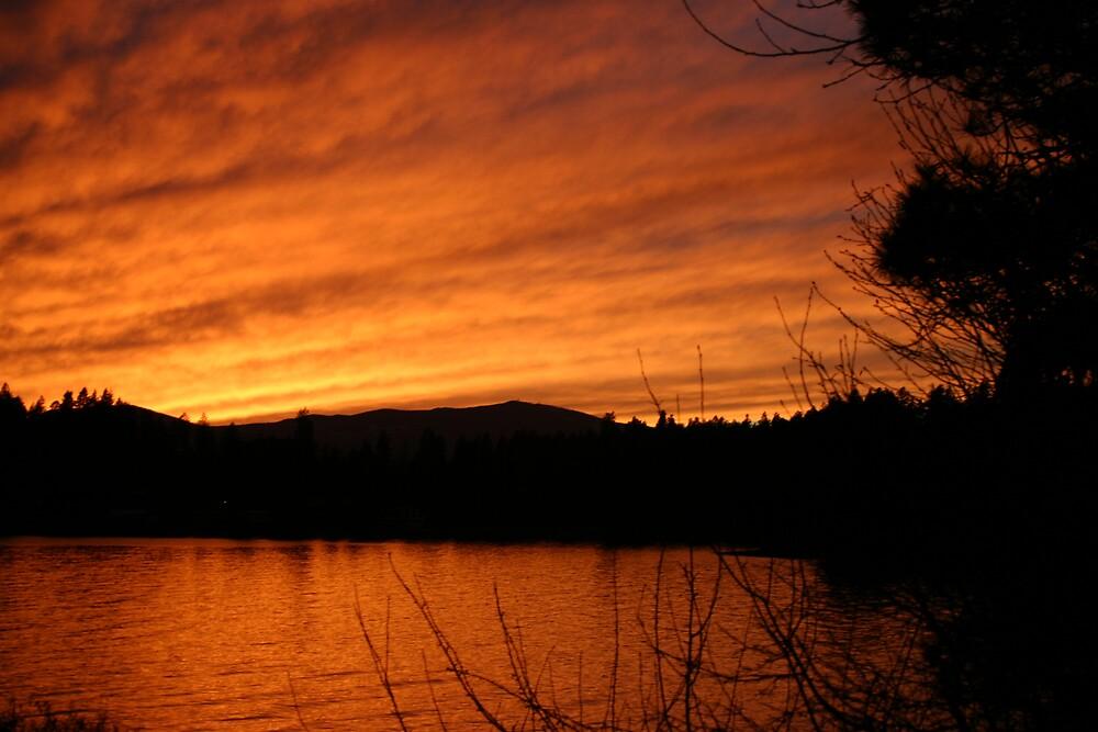 Flathead Lake, Montana by Jessica Lynn