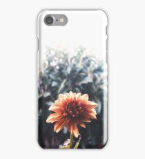 Orange Dalhia iPhone Case/Skin