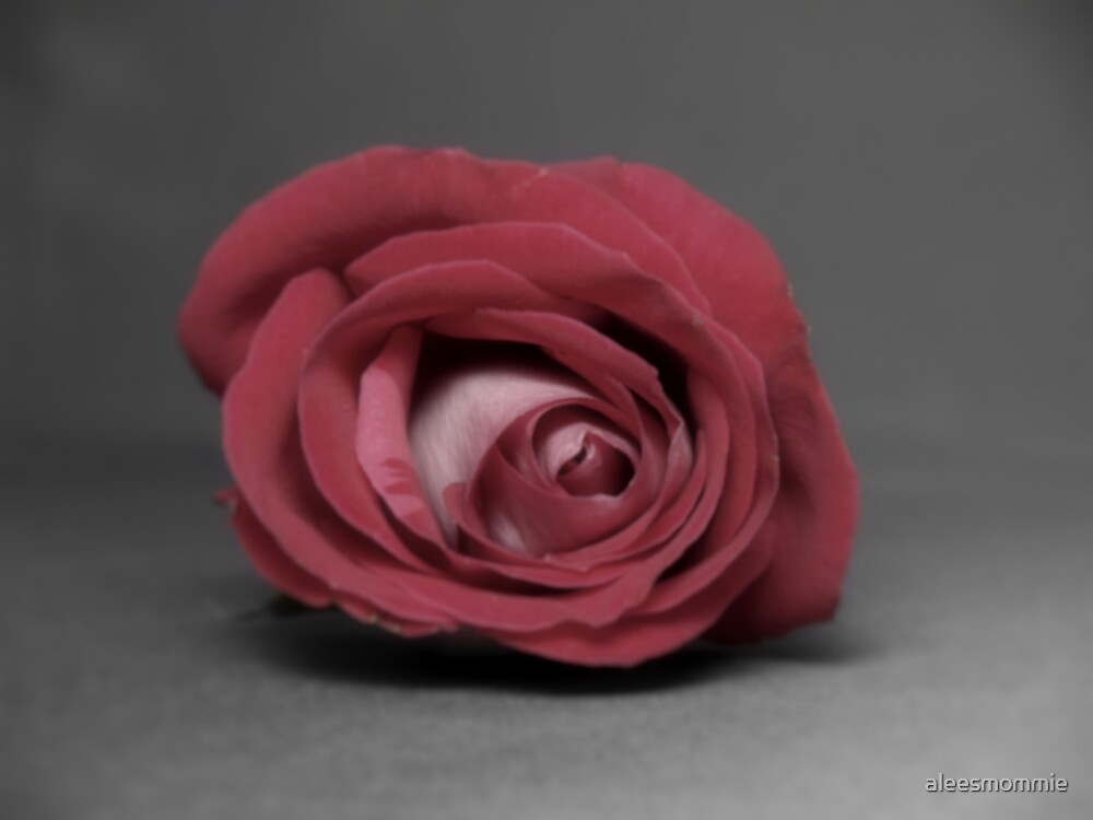 A Rose by any other name by aleesmommie