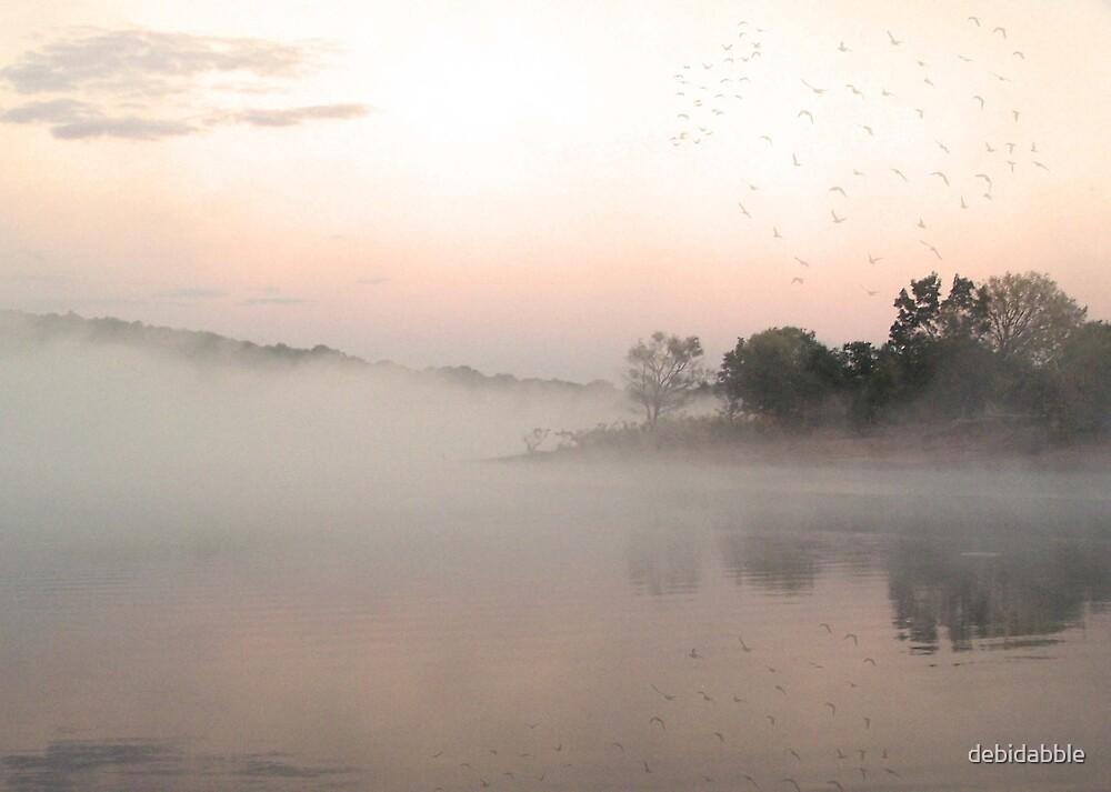 Foggy Sunrise at Walnut Creek by debidabble