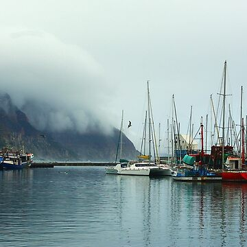 Houtbay Harbor by CrismanArt