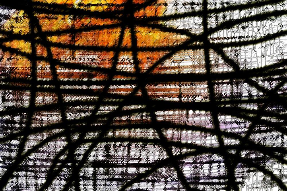 entanglement by intheflesh