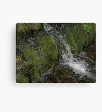 Mossy Rocks Waterfall Canvas Print