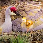 Mother's lovely touch by Zina Stromberg