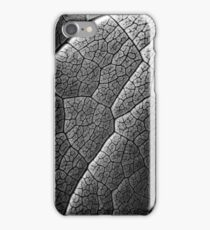 Infrared Leaf Texture With Visible Stomata Covering The Outer Epidermis Layer iPhone Case/Skin