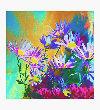Flowers bloom Photographic Print