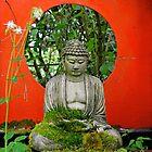 Little Zen Garden by Alexandra Lavizzari