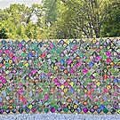 Wall of Flowers by John Thurgood