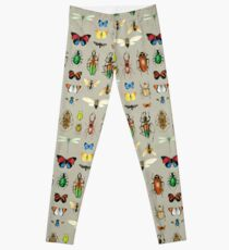 The Usual Suspects - Insects on grey - watercolour bugs pattern by Cecca Designs Leggings