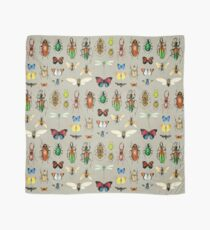 The Usual Suspects - Insects on grey - watercolour bugs pattern by Cecca Designs Scarf