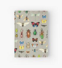 Die üblichen Verdächtigen - Insekten auf Grau - Aquarell Bugs Muster von Cecca Designs Notizbuch