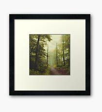 Longue promenade en forêt Impression encadrée