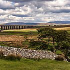 Ribblehead Viaduct by Reg-K-Atkinson
