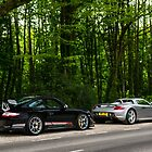 GT3RS 4.0 & Carrera GT by Rico Liu