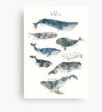 Whales Metal Print