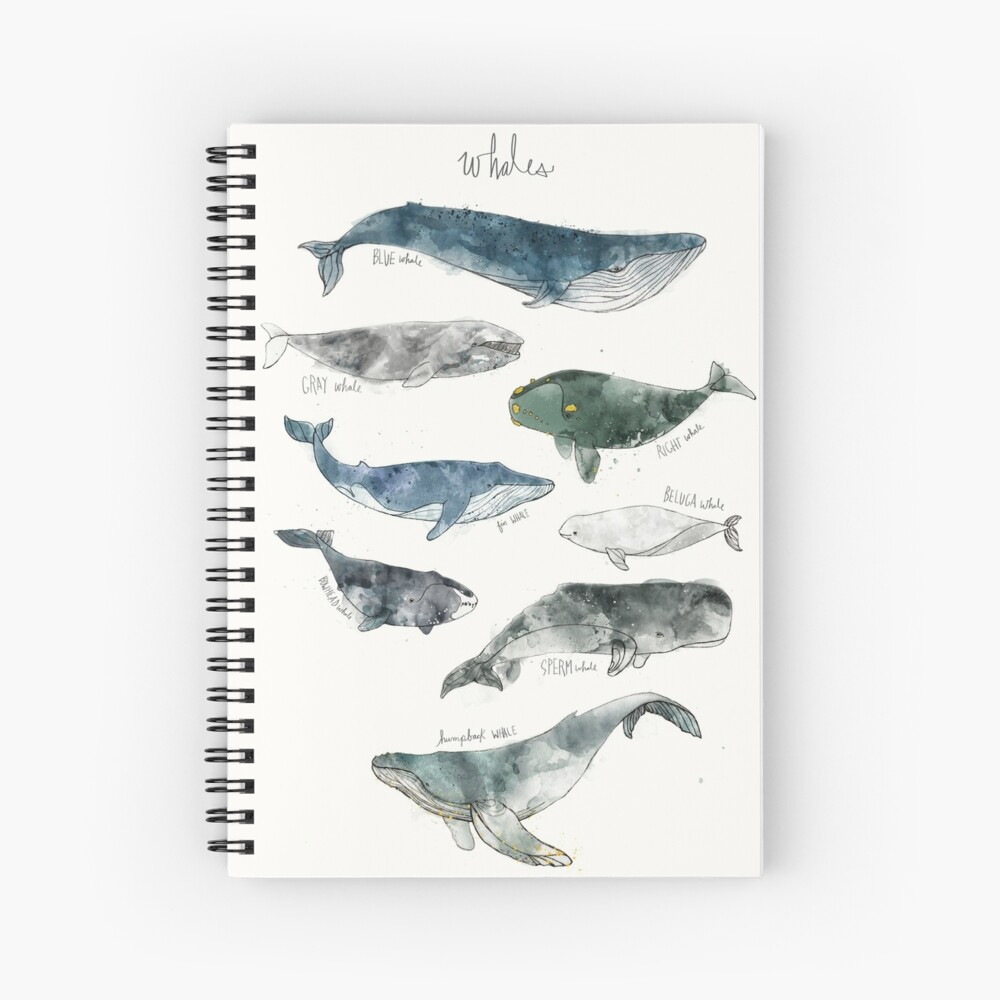 Ballenas Cuaderno de espiral
