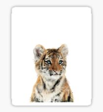 Little Tiger Sticker