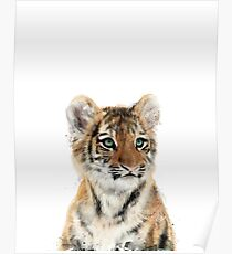 Little Tiger Poster