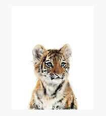 Little Tiger Photographic Print