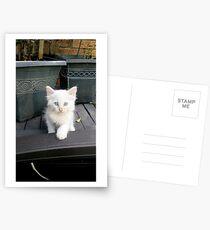 Wirst du mein Freund sein Postkarten