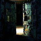 The Decay............ by Imi Koetz
