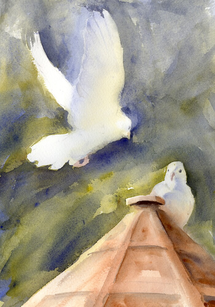 White Doves by Daniel Rodgers