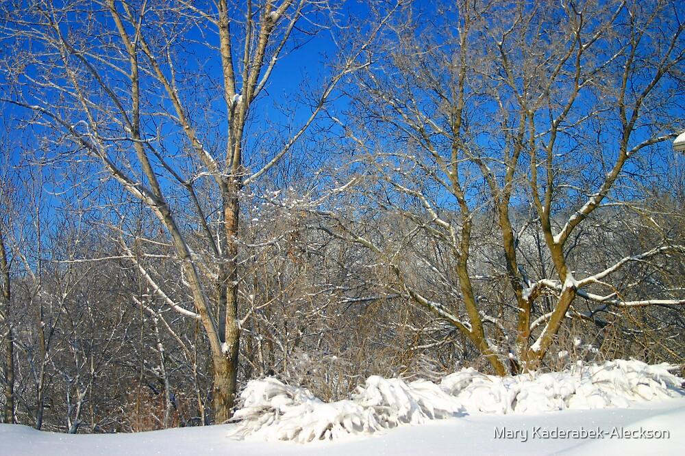 Blue Sky Winter Scene by Mary Kaderabek-Aleckson