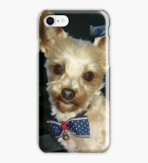 morkie iPhone Case/Skin