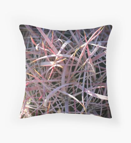 Ferocactus cylindraceus Throw Pillow