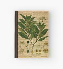 Botanischer Druck, auf alter Buchseite Notizbuch