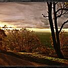 Sunset at Mt Ainslie, Canberra/Australia by Wolf Sverak