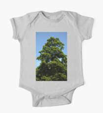 0350 - HDR Panorama - Tree One Piece - Short Sleeve