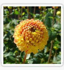Flower Sphere Sticker