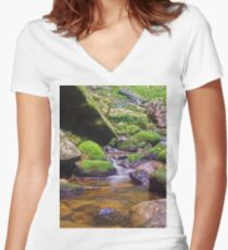 Relaxing long exposure Women's Fitted V-Neck T-Shirt