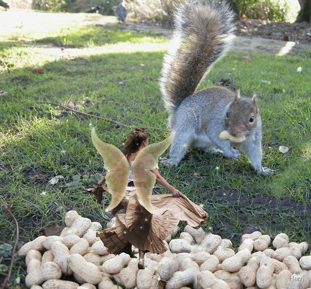Squiggy & the Nut Fairy by Harri