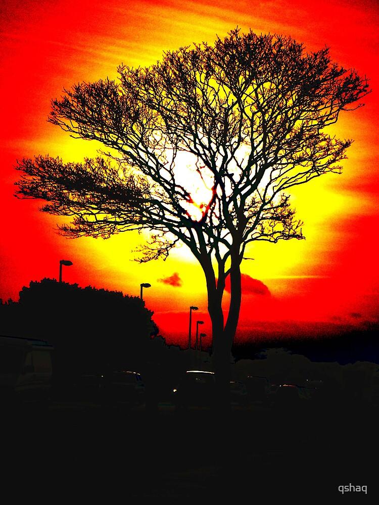 Tree Red by qshaq