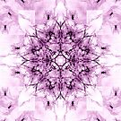 Dragonheart - Inverted Pink by ifourdezign