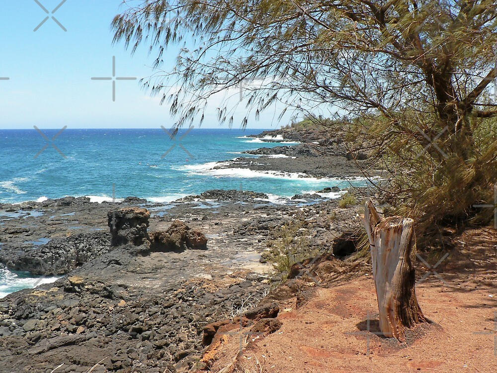 Volcanic and Red Dirt Shoreline in Kauai by Martha Sherman