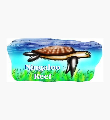 Ningaloo Reef Photographic Print