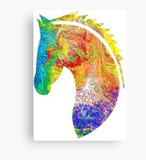 Horse Colorful Silhouette Canvas Print