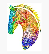Horse Colorful Silhouette Photographic Print