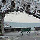 Ice-cold ... Nyon, Switzerland by Marilyn Grimble