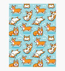 Corgi Photographic Print